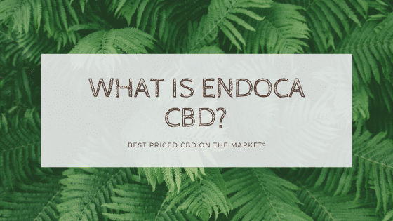 What is endoca cbd
